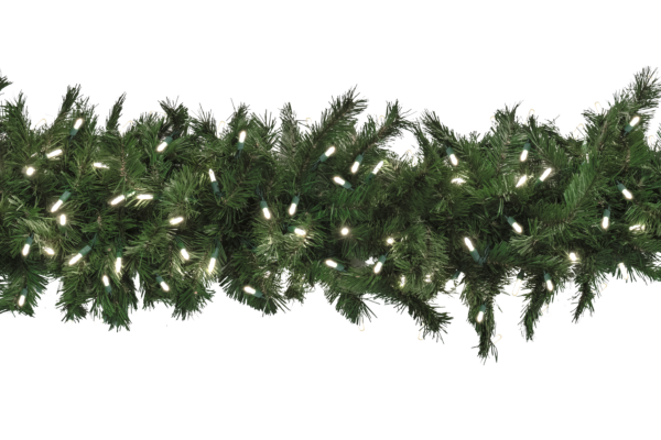 Lit garland png. Taiga evergreen with