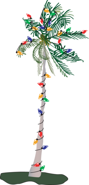 Christmas palm tree png. Free images at clker