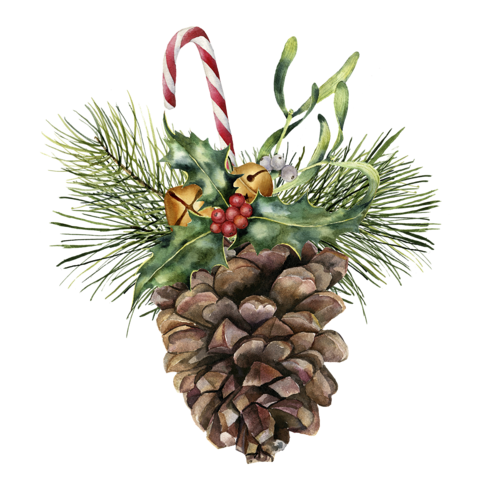 Christmas decorated pine cones png. Watercolor cone with holiday