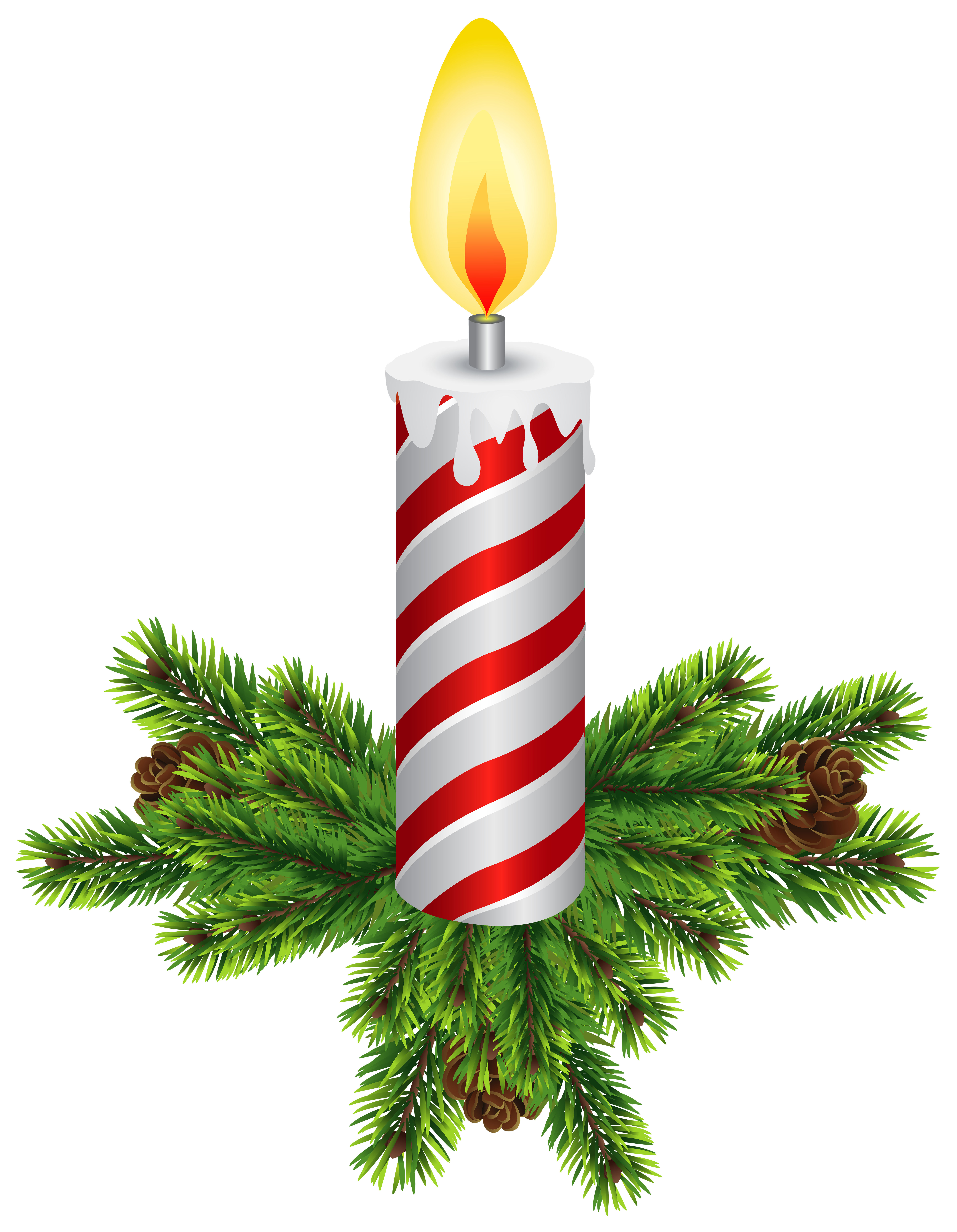 Christmas pine cone png. Clipart at getdrawings com