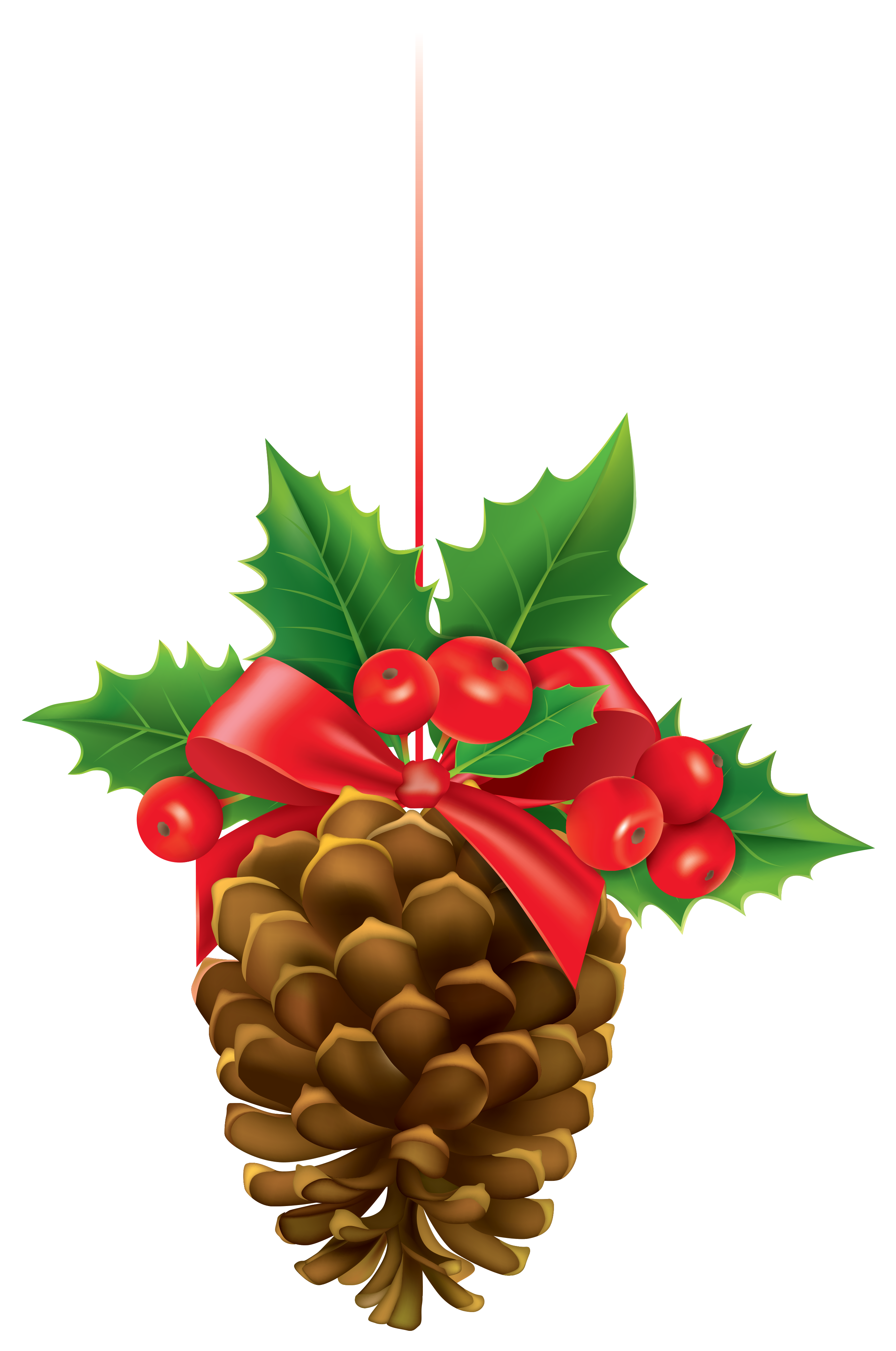 Christmas pine cone png. Pinecone with mistletoe clipart