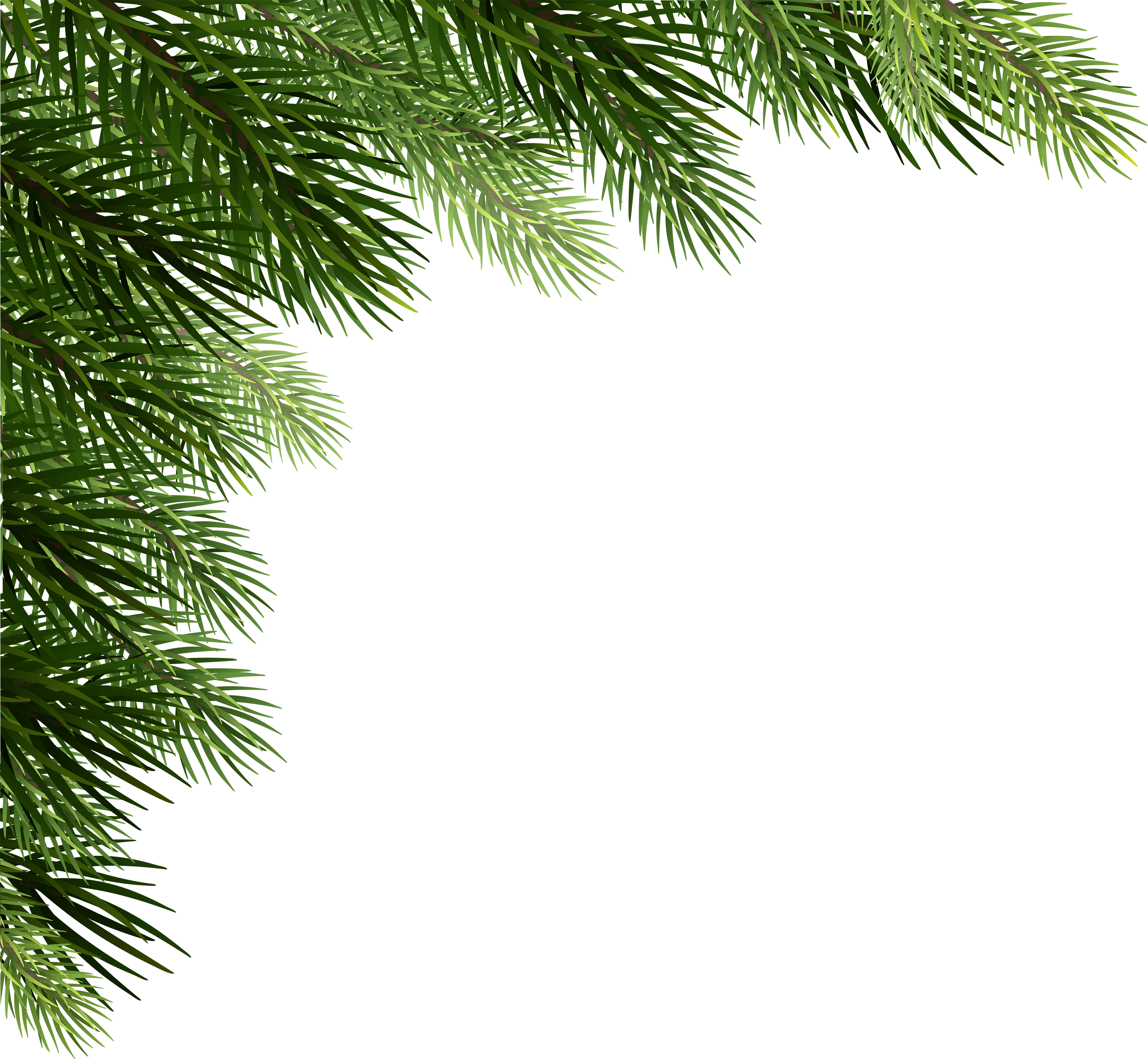 Christmas Branch Png.Christmas Pine Transparent Png Clipart Free Download Ywd