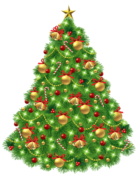 Christmas pine png. Tree images free download