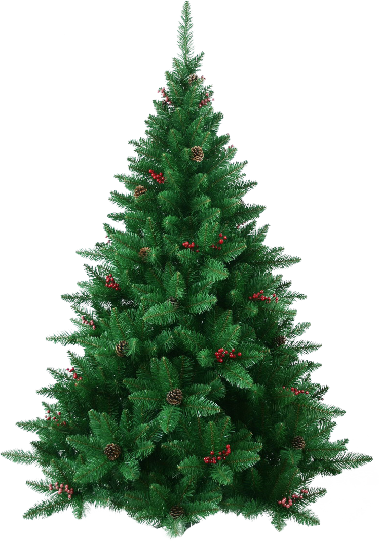 Christmas pine png. Xmas tree by iamszissz