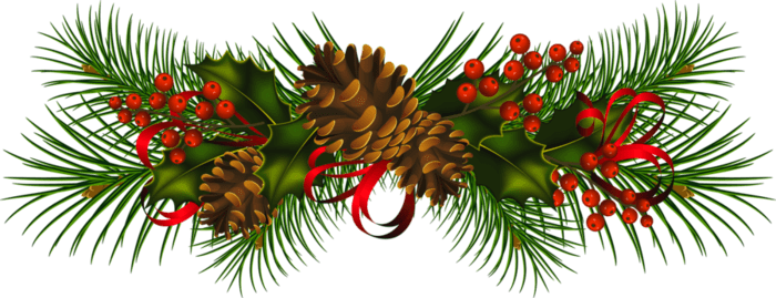 Christmas pine png. Cone mistletoe transparent stickpng