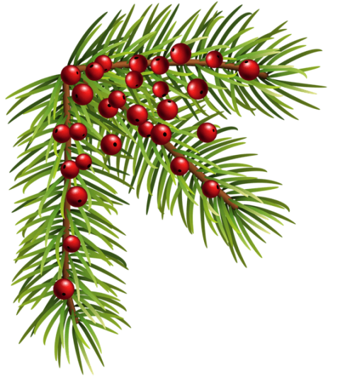 Christmas png corner. Pine free images toppng