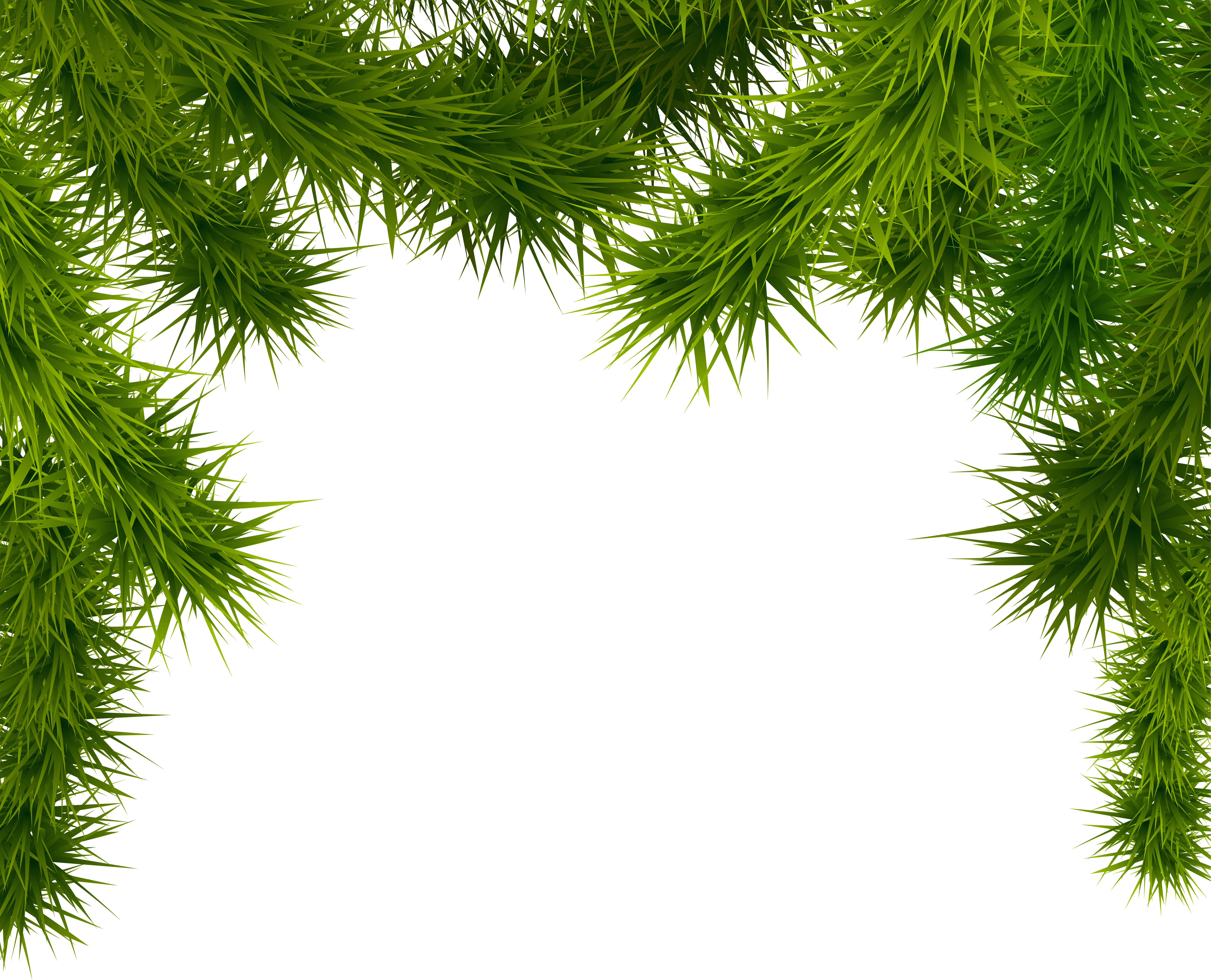 Pine branches png. Clipart image gallery yopriceville