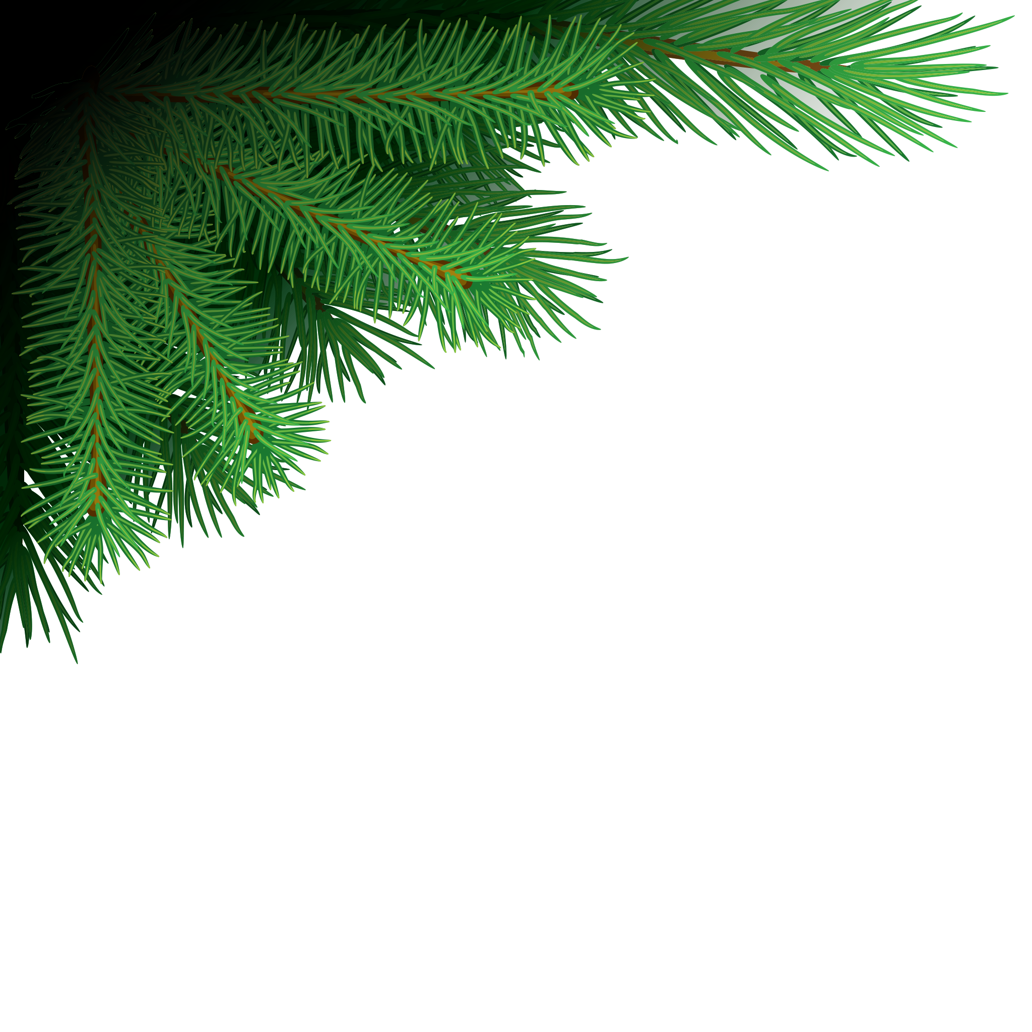 Christmas Branch Png.Christmas Tree Branch Transparent Png Clipart Free