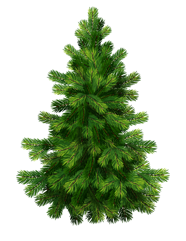 Christmas tree .png. Png images free download