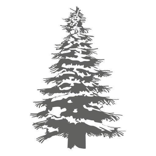 White pine tree white silhouette png. Transparent svg vector