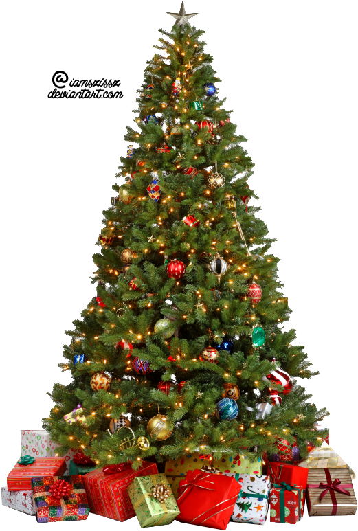 Christmas tree transparent png. Background mart
