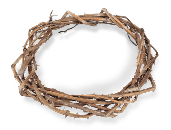 Christs crown of thorns png