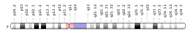 X drawing chromosome. Genetics home reference nih