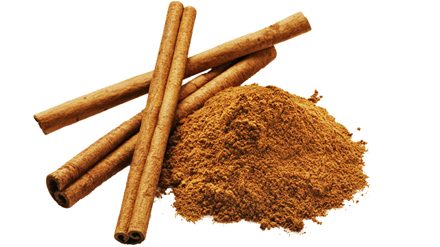 Amazing health benefits you. Cinnamon bark png vector library download