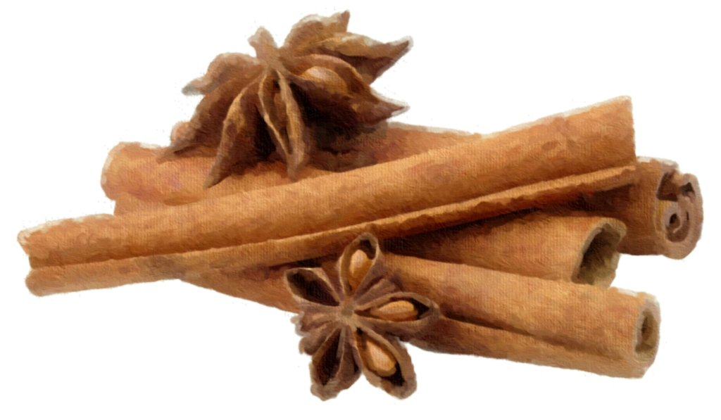 Cinnamon png. And star anise by