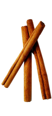 Sticks image . Cinnamon png clip library library