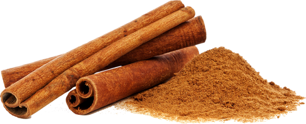 Cinnamon transparent. Ceylon fresh quality sticks