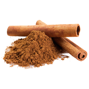 Cinnamon vector masala. Concentr multi fermet products