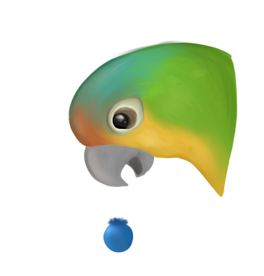 cintiq drawing green cheek conure