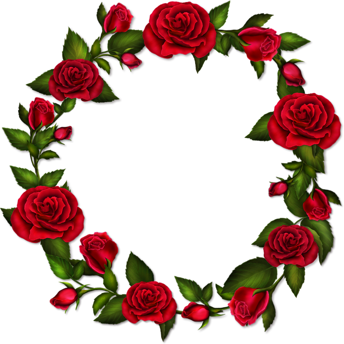 Circle flower png. Roses transparent frame gallery