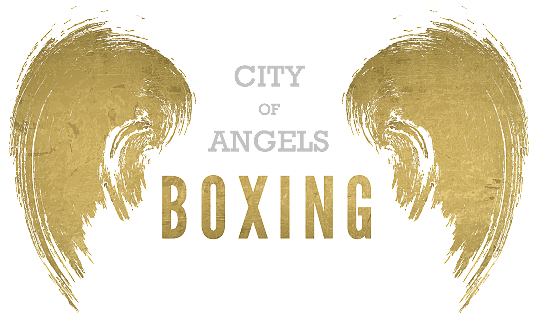 City of angels png. Boxing sport com