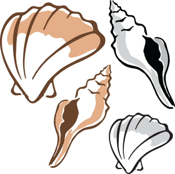 Clam clipart. At getdrawings com free