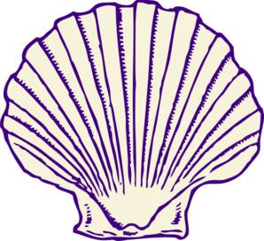Drawing shells mussel outline. Shell clipart small for