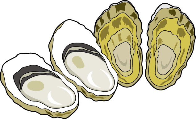 Clam vector clipart. Black and white