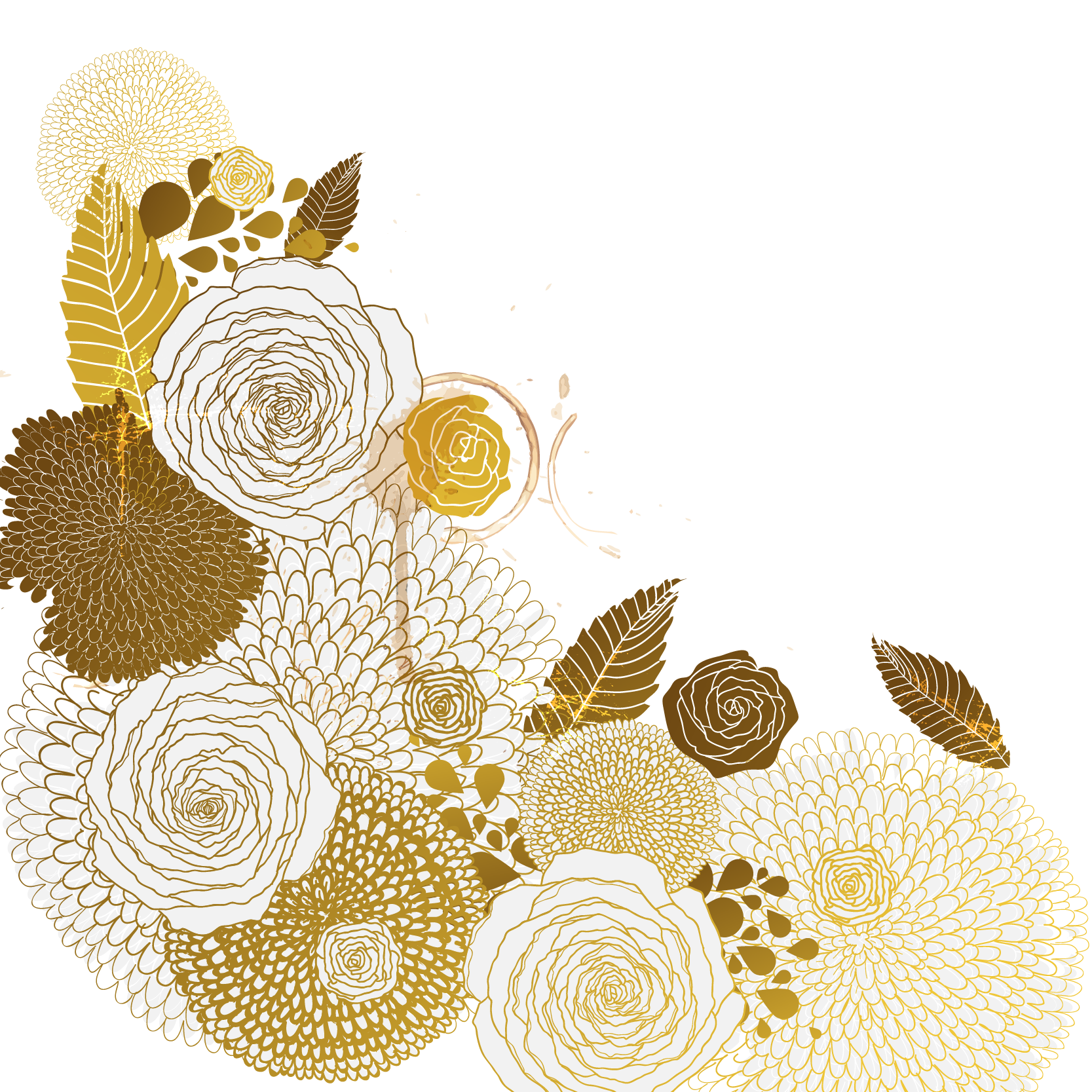 Clam vector golden. Flower euclidean pattern transprent