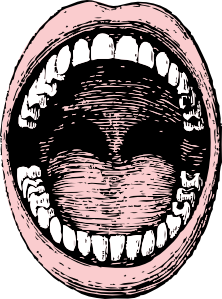 Drawing it mouth. Open clip art at