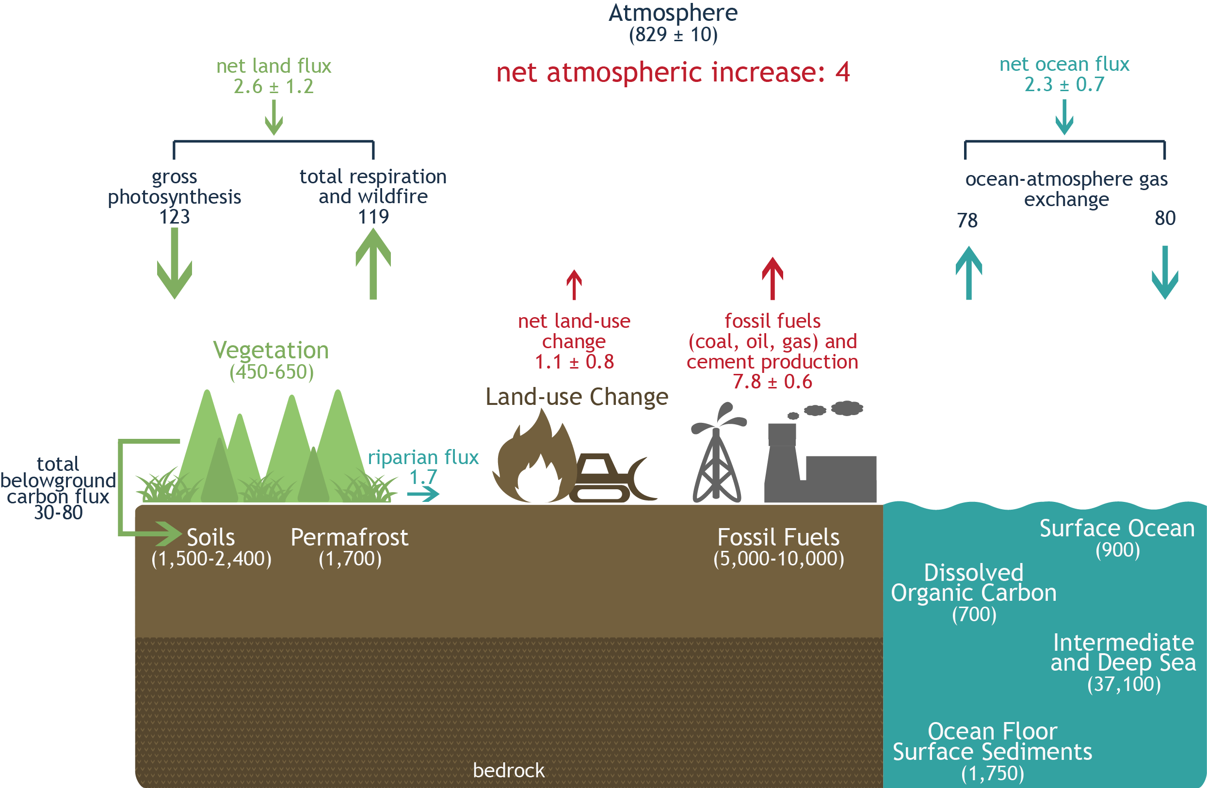 Annotated drawing carbon cycle. Global climate change resource