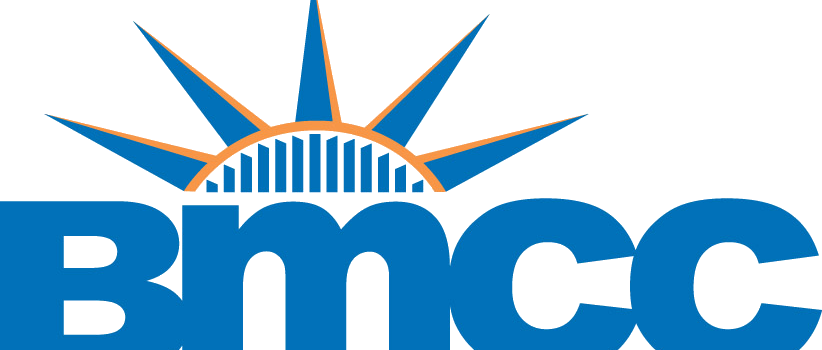 Clip cuny bmcc. The value of a
