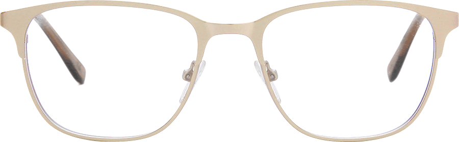 Clip sunglasses dwayne wayne. Collection sunnies specs in