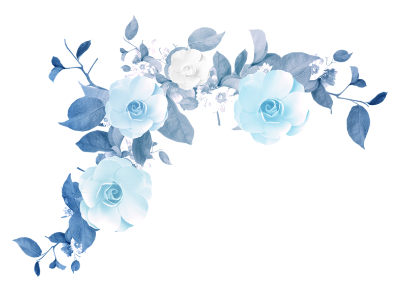 Clouds png tumblr. Watercolor flower peoplepng com