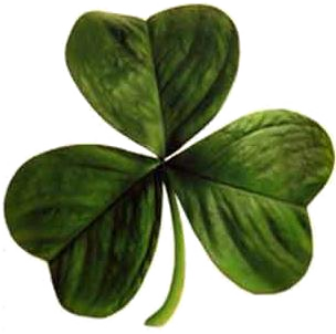 Irish clover png jpg library download
