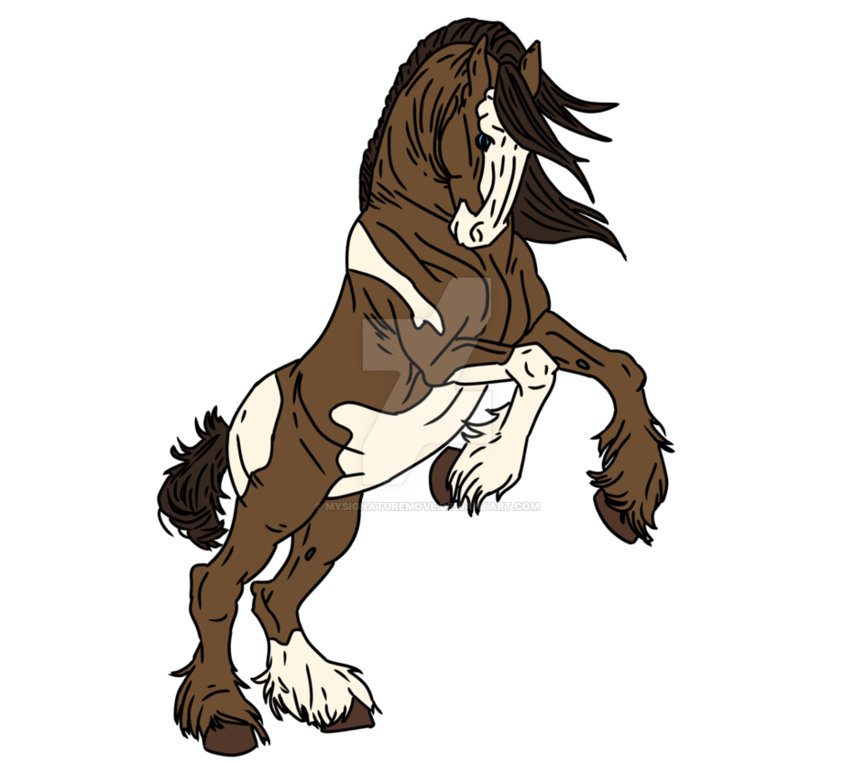 Clydesdale drawing