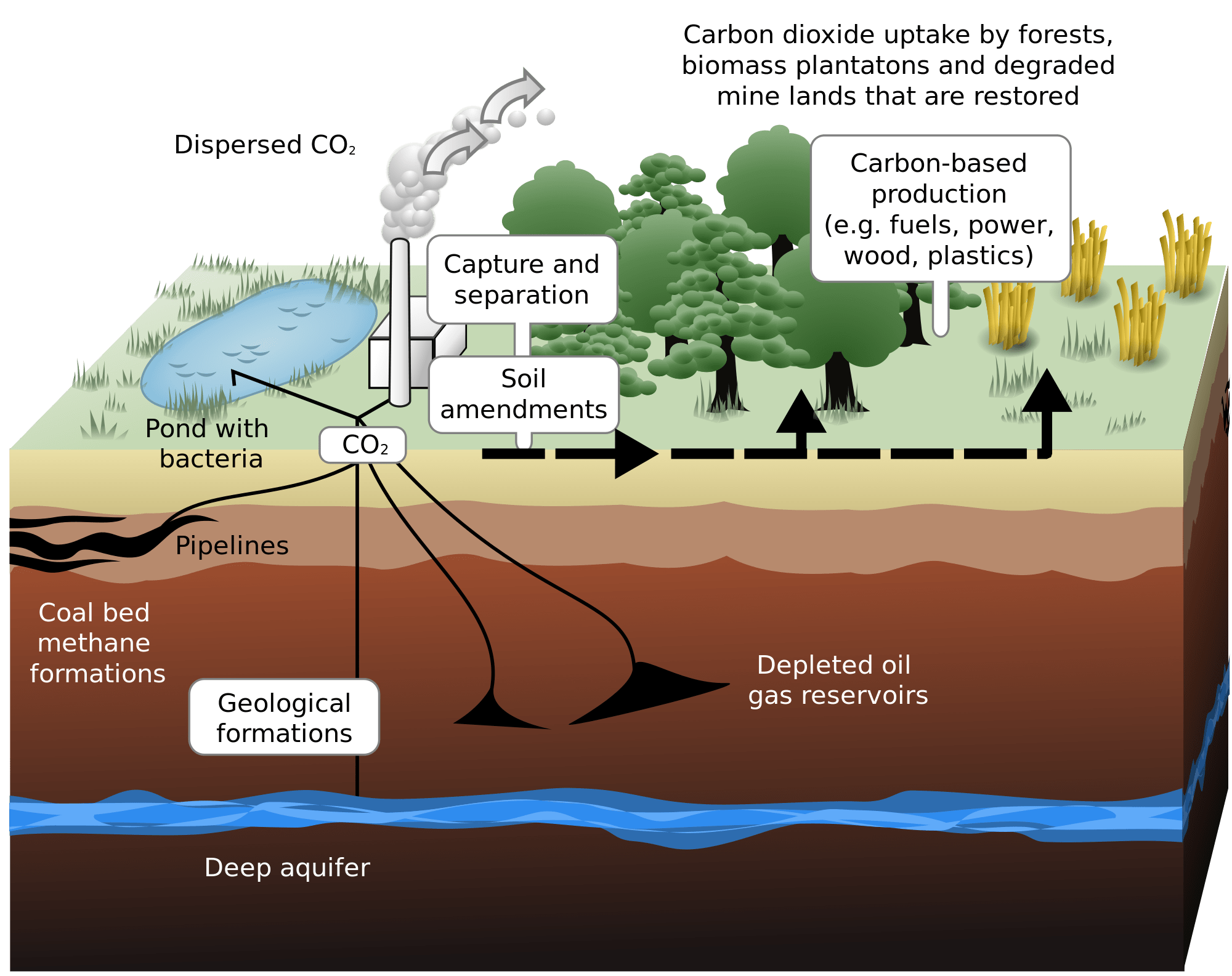 Co2 drawing smog. How does carbon capture