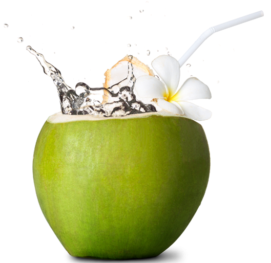 Em image . Coco png graphic stock