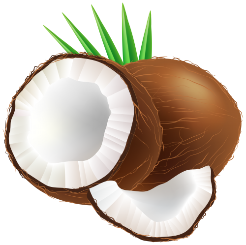 coco nut png