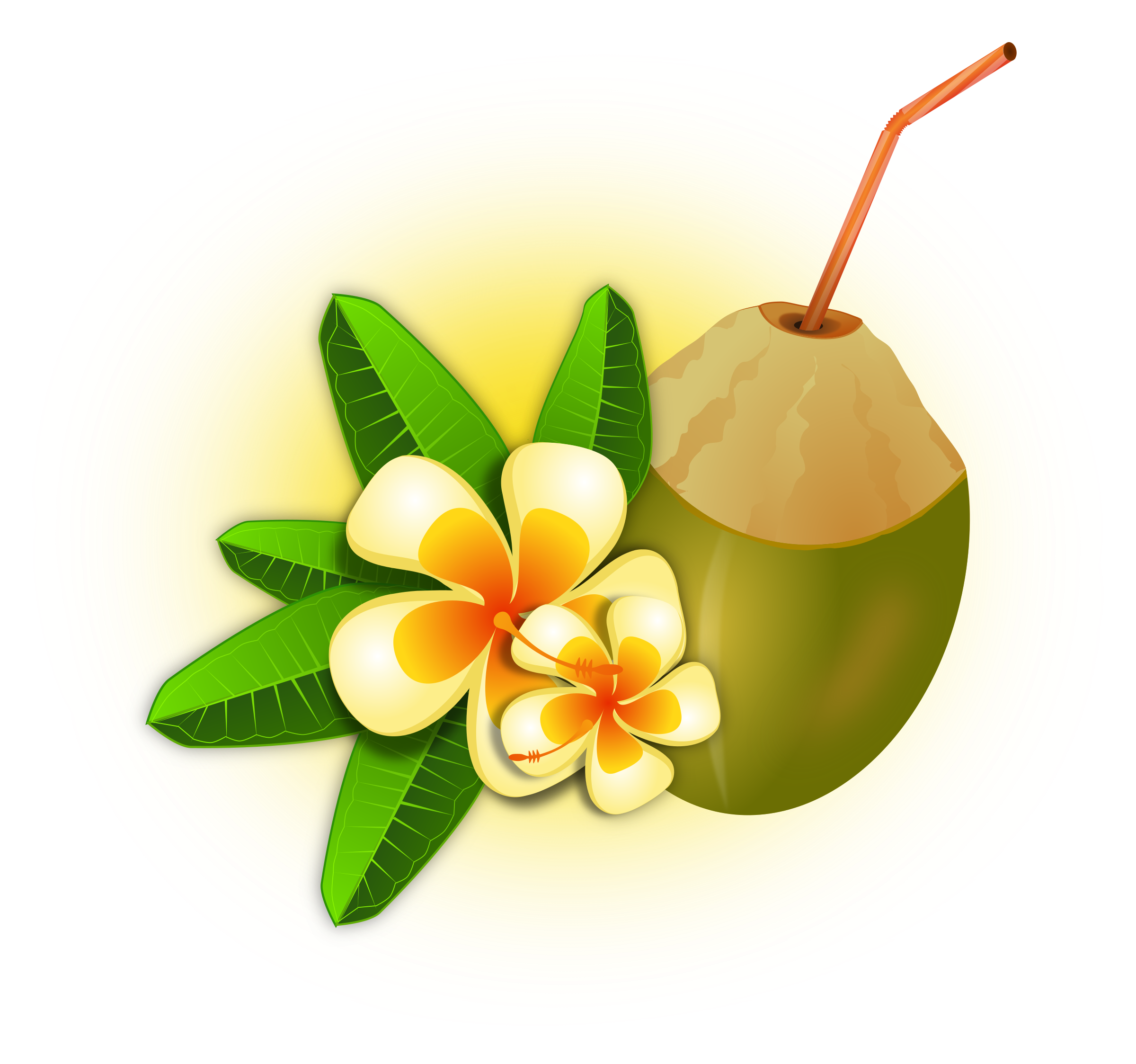 Coconuts vector pdf. Coconut cocktail icons png