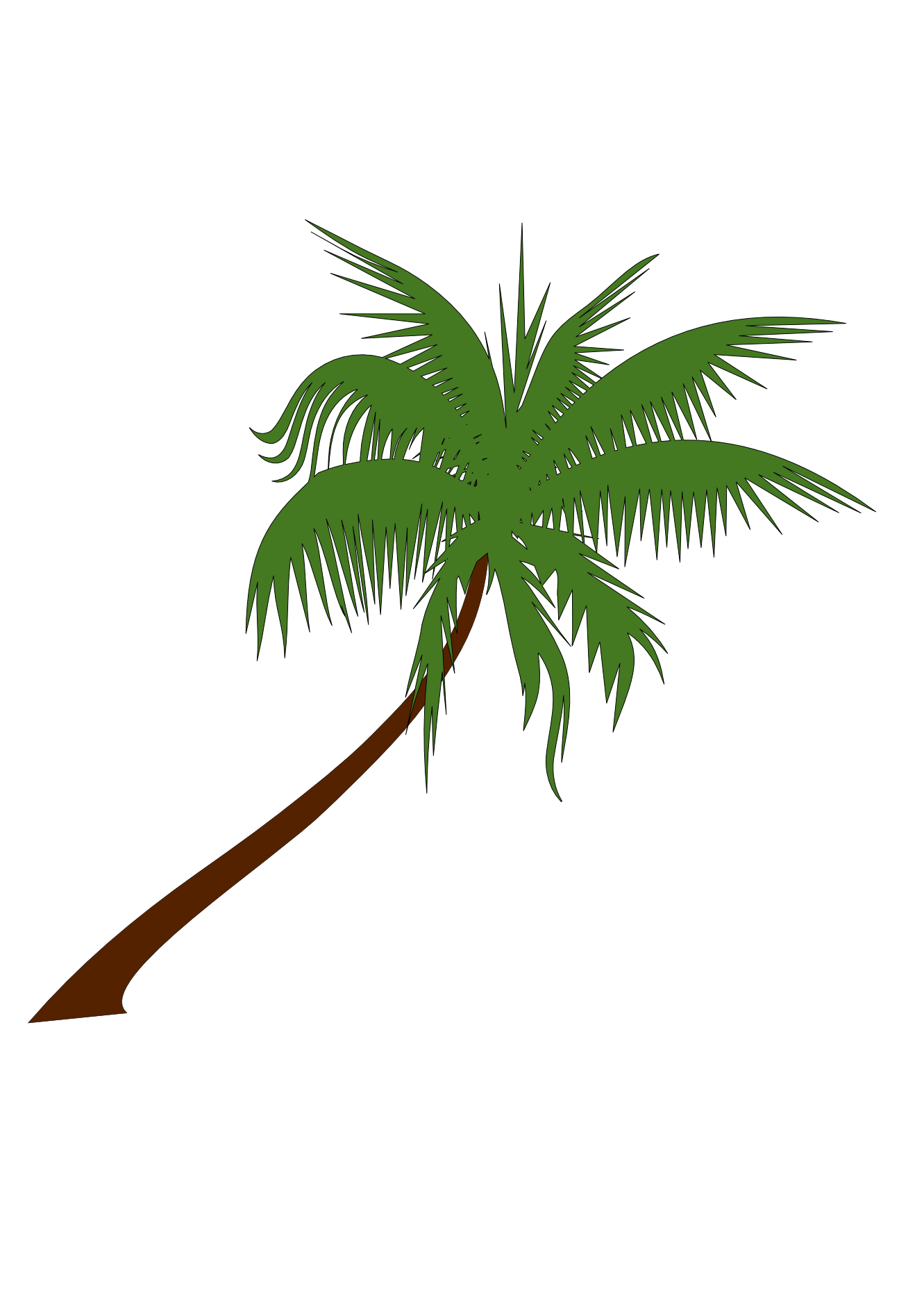 Birds eye view palm trees png. Free tree vector art