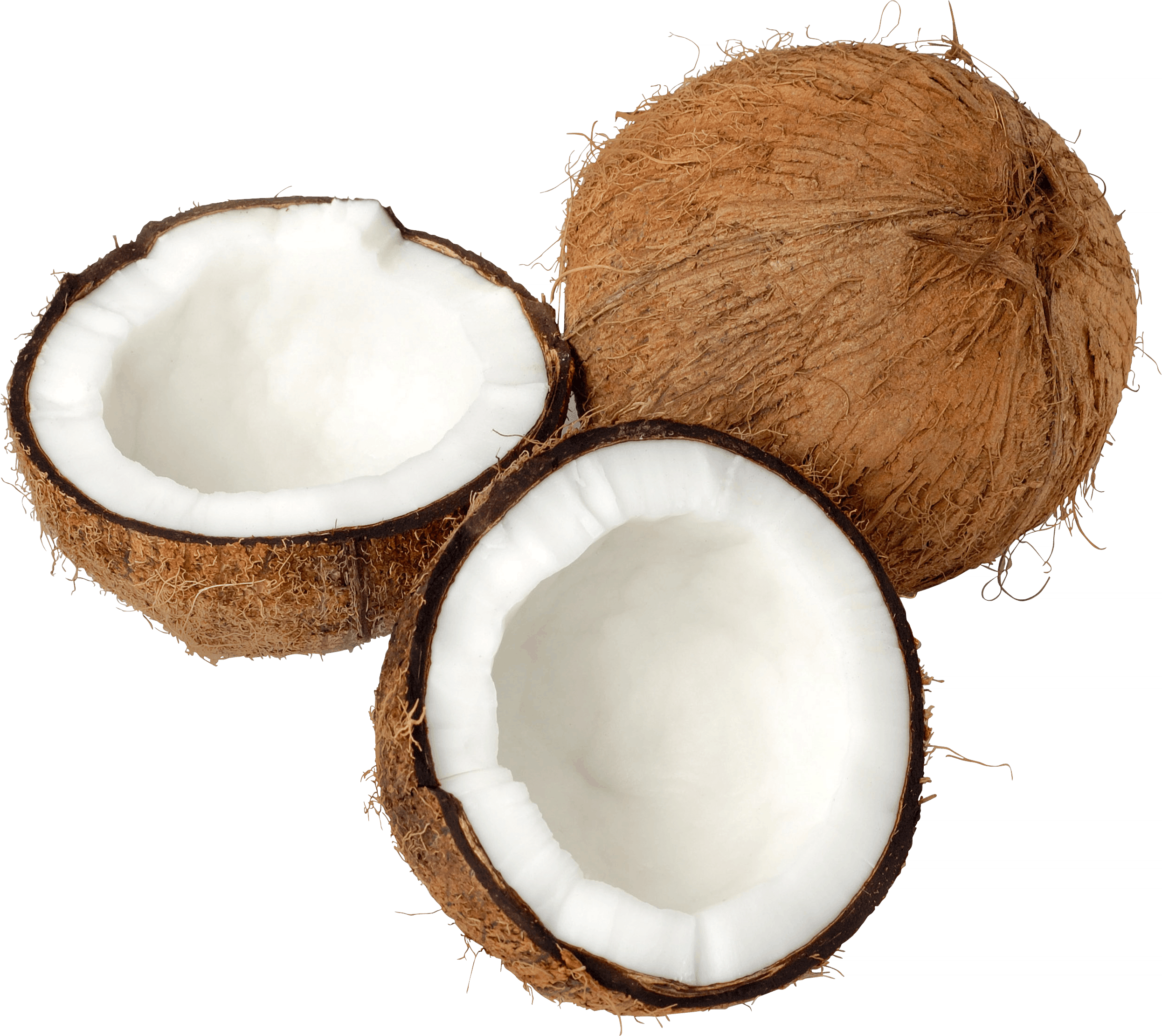 Coconut png images. Trio open transparent stickpng