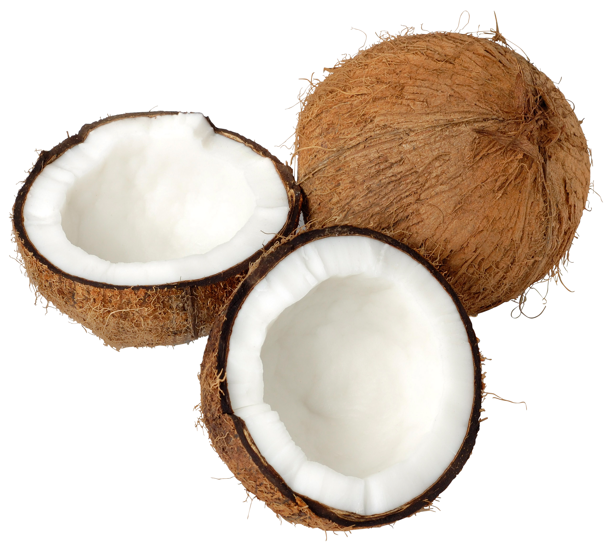 coconut oil png