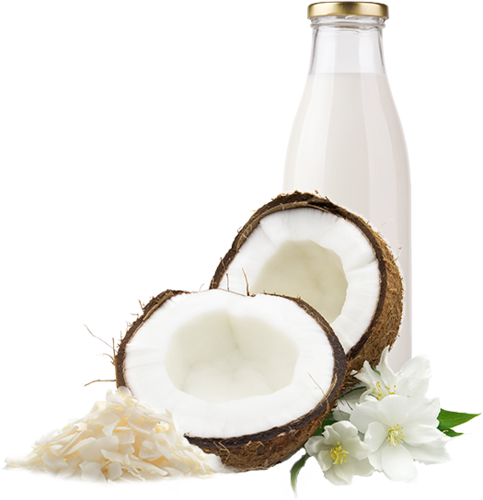 Coconut milk png. At rs piece id