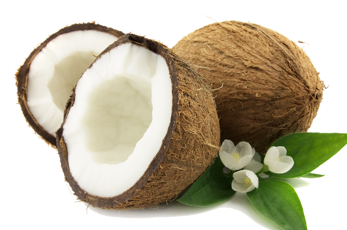 Coconut png images. Transparent all
