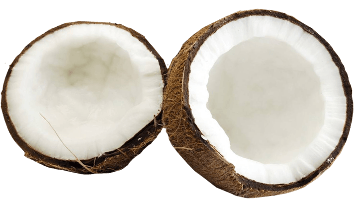 Png images free download. Coconuts vector coconut husk png transparent library