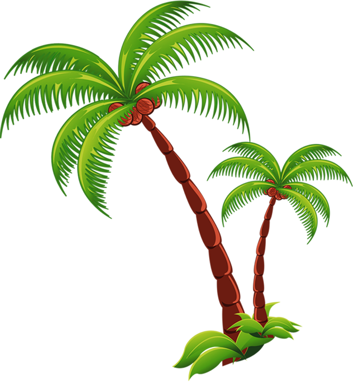 Coconut tree png. Picture arts