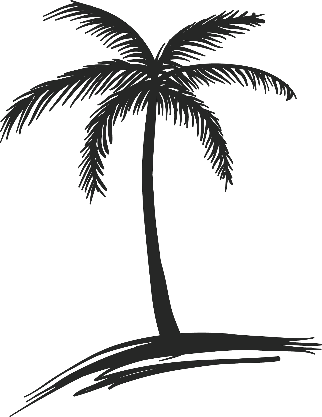 Coconut tree vector png. Free drawing download clip