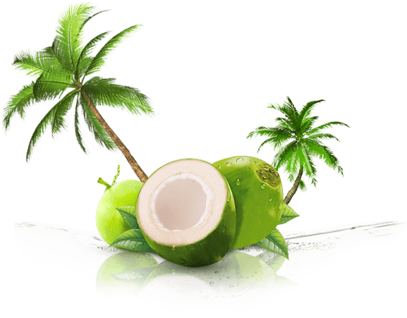 Coconut water png. Anjali s fresh coco