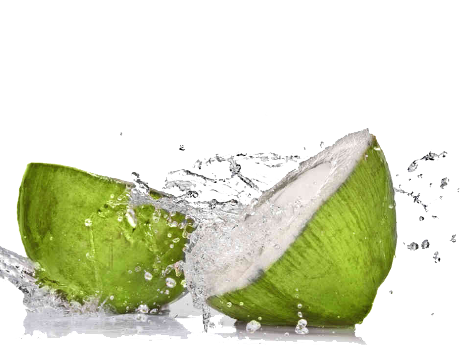 Coconut water png. Coconuts for paleo dieting